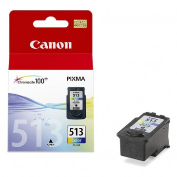 Originale Canon 2971B009 Cartuccia inkjet alta resa blister security Chromalife 100+ CL-513 colore