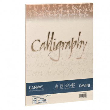 Calligraphy Canvas Ruvido Favini avorio A4 100 g A69Q214 (conf.50)