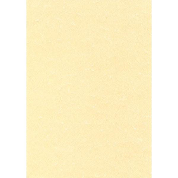 Carta pergamena decadry a3 champagne 165 g mq pcl1807 - Caduta fogli di colore stampabili ...