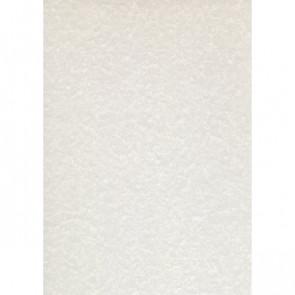Carta pergamenata Decadry A4 avorio 95 g/mq PCL1602 (conf.100)