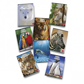Quaderni A4 Animal World Pigna A4 A (righe) 40+R ff 02253580A (conf.10)
