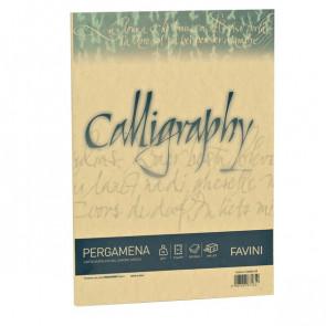 Calligraphy Pergamena Liscio Favini oro fogli A4 190 g A69W084 (conf.50)