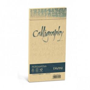 Calligraphy Pergamena Liscio Favini oro buste 11x22 cm 90 g A57W203 (conf.25)